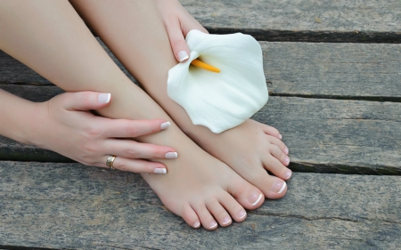 Relaxing day - feet, flower, white, woman, wood