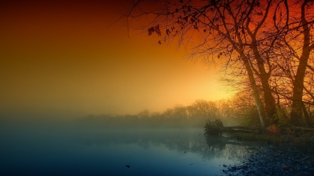 Gloomy Lake - lakes, multicolor, myst, dew, nature, Gloomy, trees, fog