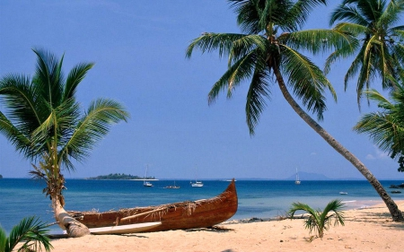Outrigger Canoe on a Tropical Beach - Tropical, Canoe, Beach, Nature