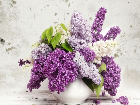 Sunday flowers for Di - purple, flowers, white, lilacs, mauve