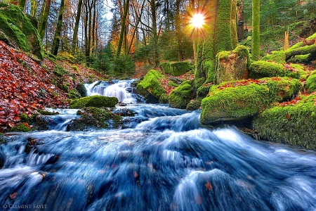 Fresh Water Woods Stream - forest, rocks, water flowing, green nature, woods, sunrays, river moss, water, splendor, paradise, mountains, fresh water, nature, sunshine, streams, landscape