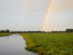 Rainbow over a Cow Pasture