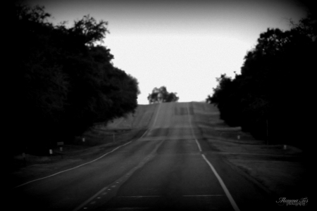 Heading Down The Road - highway, transportation, road, travel