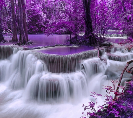 Purple Forest - forest, art, beautiful, trees, water, purple, beauty, nature, river, white