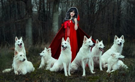 ♥ - beauty, red, lady, dogs