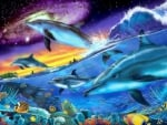 ★Splendid Dolphins★