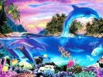 ★Dolphin Panorama★