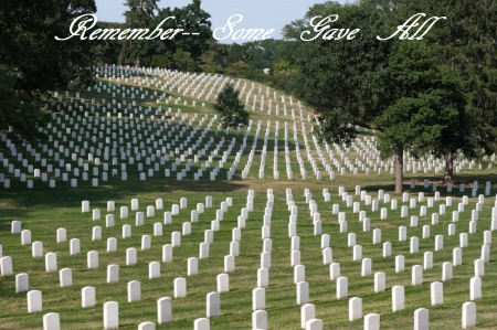 Some Gave All - holiday, memorial day, cemetery, patriotic