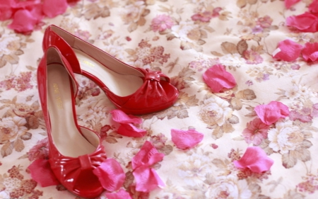 Red shoe - stiletto, red, petals, shoe