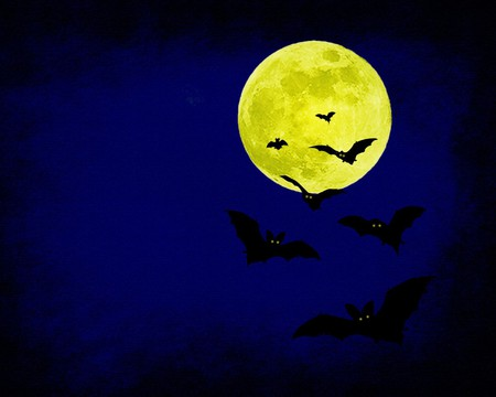 Halloween Bat - irish, bat, halloween, samhain, dark, celtic, scarry, moon, full moon