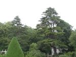 Aviary and Garden
