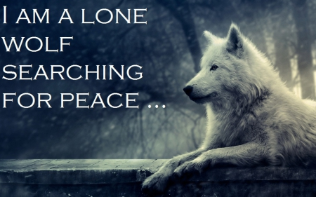wolf wisdom - Motivational Quotes Wallpapers and Images