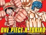One Piece Toriko