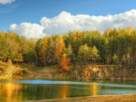 * Autumn in forest *