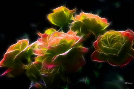 Bright Fractal Roses Orange Colors Spring Roses Abstract Summr