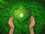 Green Love for~Nature Protection~