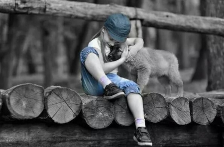 Friends forever... - girl, love, forever, black and blue, two colors, dog, friends
