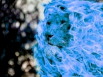 blue fire lion
