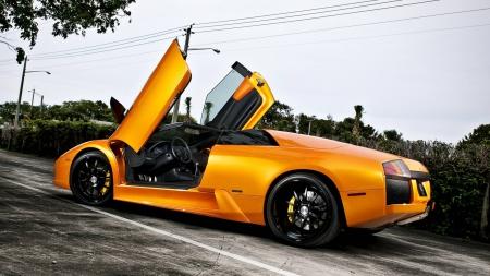 Sweet Gold Lambo Lamborghini Cars Background Wallpapers