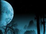 Twilight of the wolf
