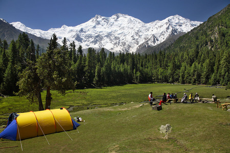 Fairy Medow And Nanga Parbat Forests Nature Background
