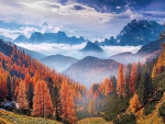 Autumn Forest At The Alps, Italy