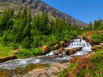 Glacier-Lunch Creek