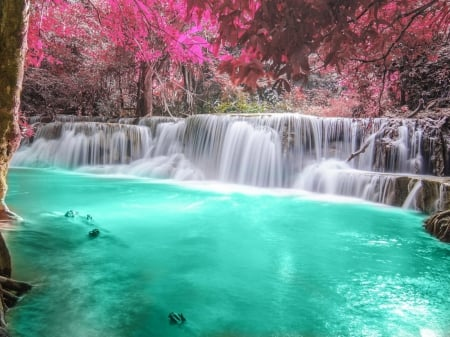 Paradise Waterfall Waterfalls Nature Background Wallpapers On Desktop Nexus Image 1763725