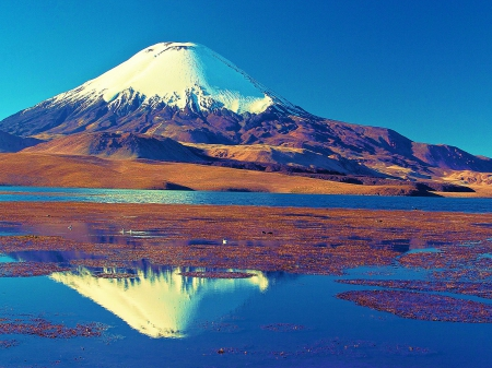 Snowy Peak Reflection - mountain, Chile, beautiful, blue sky, white, volcano, lake
