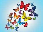 Butterflies in aqua