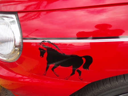 Black horse red car - red, free wallpaer, black, black horse, shellandshilo, horse, photography, cool, sticker, wallpaper, decal, like