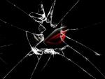 asus republic of gaming broken glass