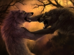 Werewolves Fighting