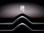 Citroen DS3 badge and grill