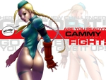 fight cammy