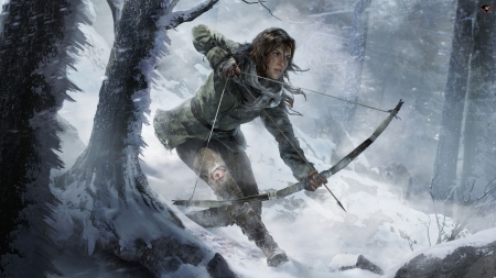Rise Of The Tomb Raider Other Video Games Background