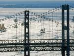 sailboat regatta by chesapeake bay bridges