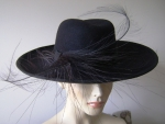 Black Hat with Feathers