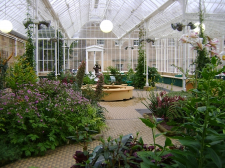 Flowers in a victorian conservatory - conservatory, flowers, victorian, collection