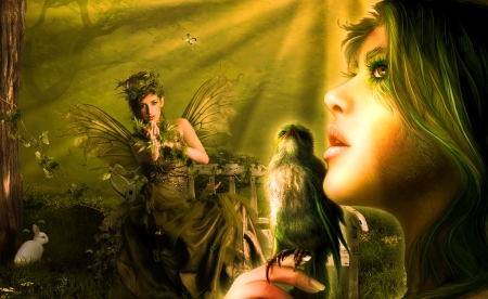 Bird Fairy - art, cg, beautiful, abstract, woman, fantasy, girl, bird, wallpaper, digital, fairy