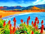 Flowers in Coastal Paradise