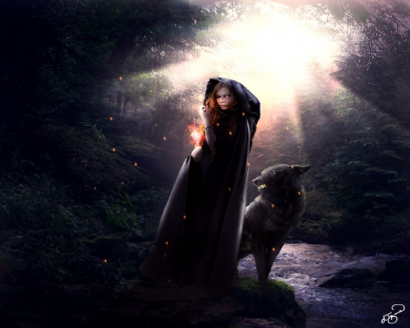 Witch And Wolf
