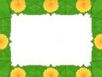 Daffodil frame