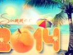 ★☆★ HAPPY SUMMER 2014 ★☆★