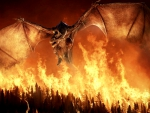 A Reign of Fire