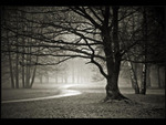 Spooky Pathway
