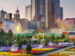 beautiful flower market in downtown dallas hdr