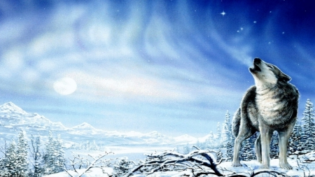 Howling Wolf - stars, forest, livingdoll, woods, black, beautiful, howl, winter, tree, moon, snow, wolf, white, howling, dog, blue
