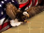 Freedom and Sacrifice
