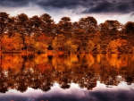 autumn forest reflected in lake hdr